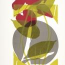 Winter garden, screen print on Bockingford paper, 38x50 cm, Edition 12.